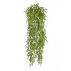 Аспарагус куст зелёный ампельный (пластик) в-65 см 12/120