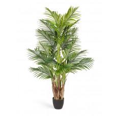 Пальма Арека Бетель в-130 см (Sensitive Botanic) (5 стволов, 20 листов) 2/2