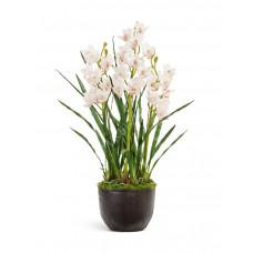 Орхидея Цимбидиум куст белый в-115 см 3 ветки с имитацией земли (без кашпо) (Sensitive Botanic) 1/1