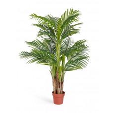 Пальма Арека Катеху в-140 см (Sensitive Botanic) (5 стволов, 18 листьев) 2/2